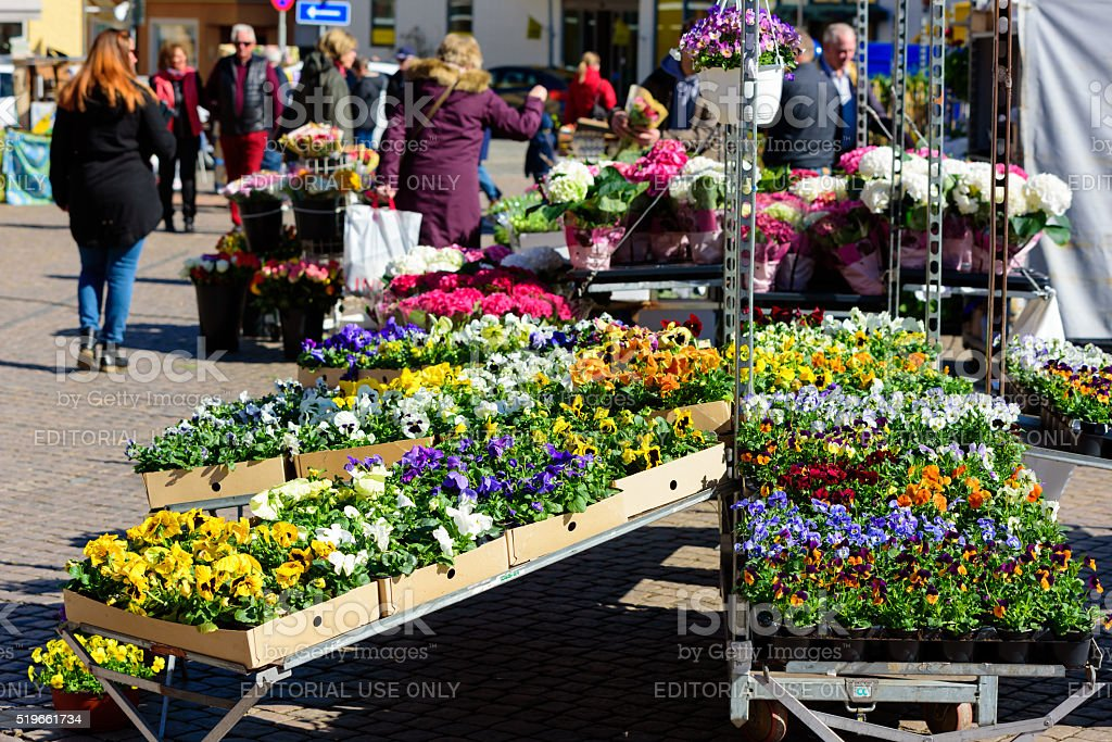 Spring flowers on market stock photo