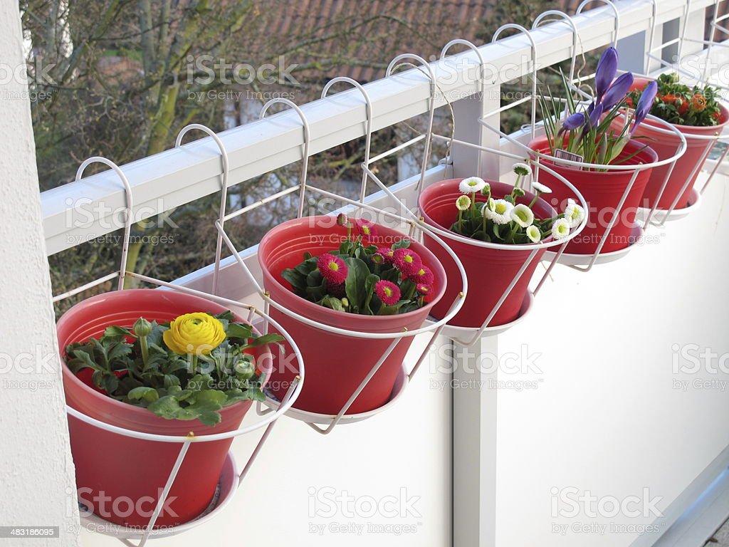 frühling blumen auf dem balkon stockfoto 483186095 | istock, Gartengerate ideen