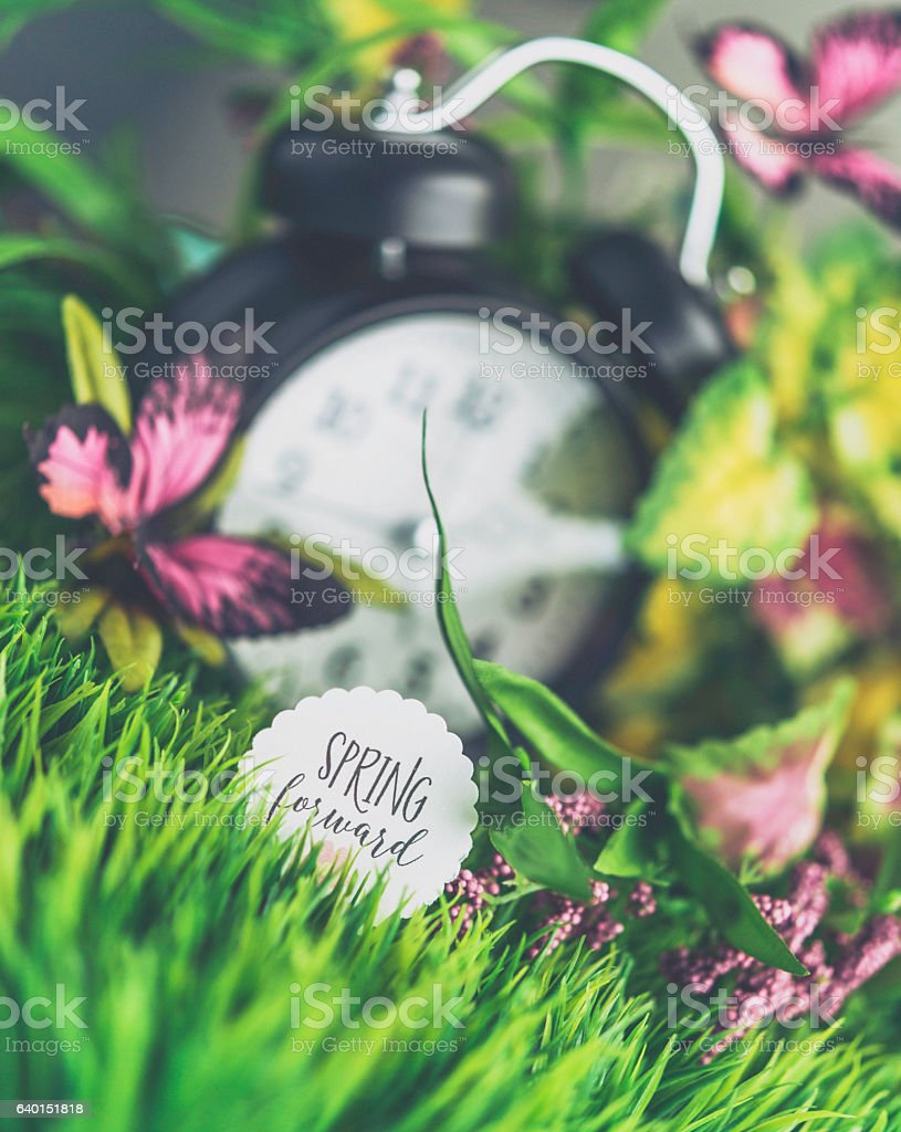 Spring forward. Daylight Saving Time with clock and spring foliage stock photo