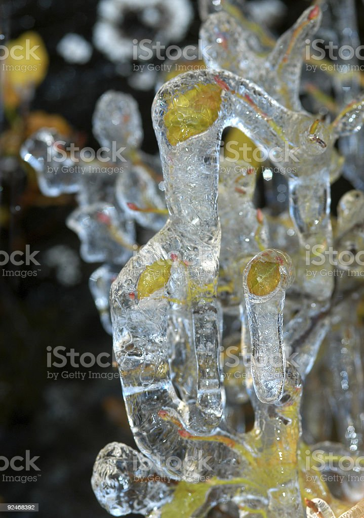Spring freeze stock photo
