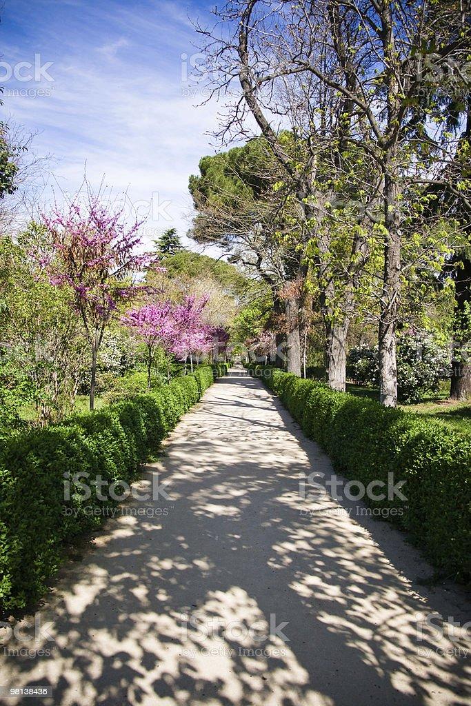 Spring garden in Madrid royalty-free stock photo