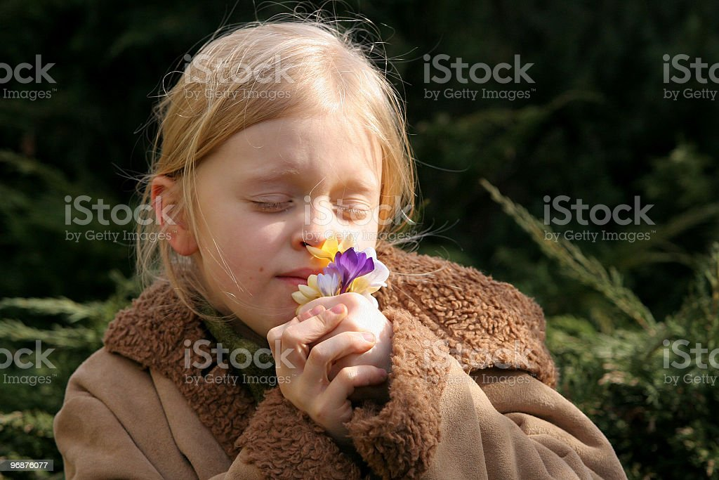 Spring girl royalty-free stock photo
