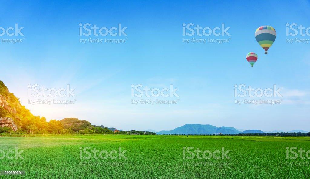 Spring, grassland, stock photo