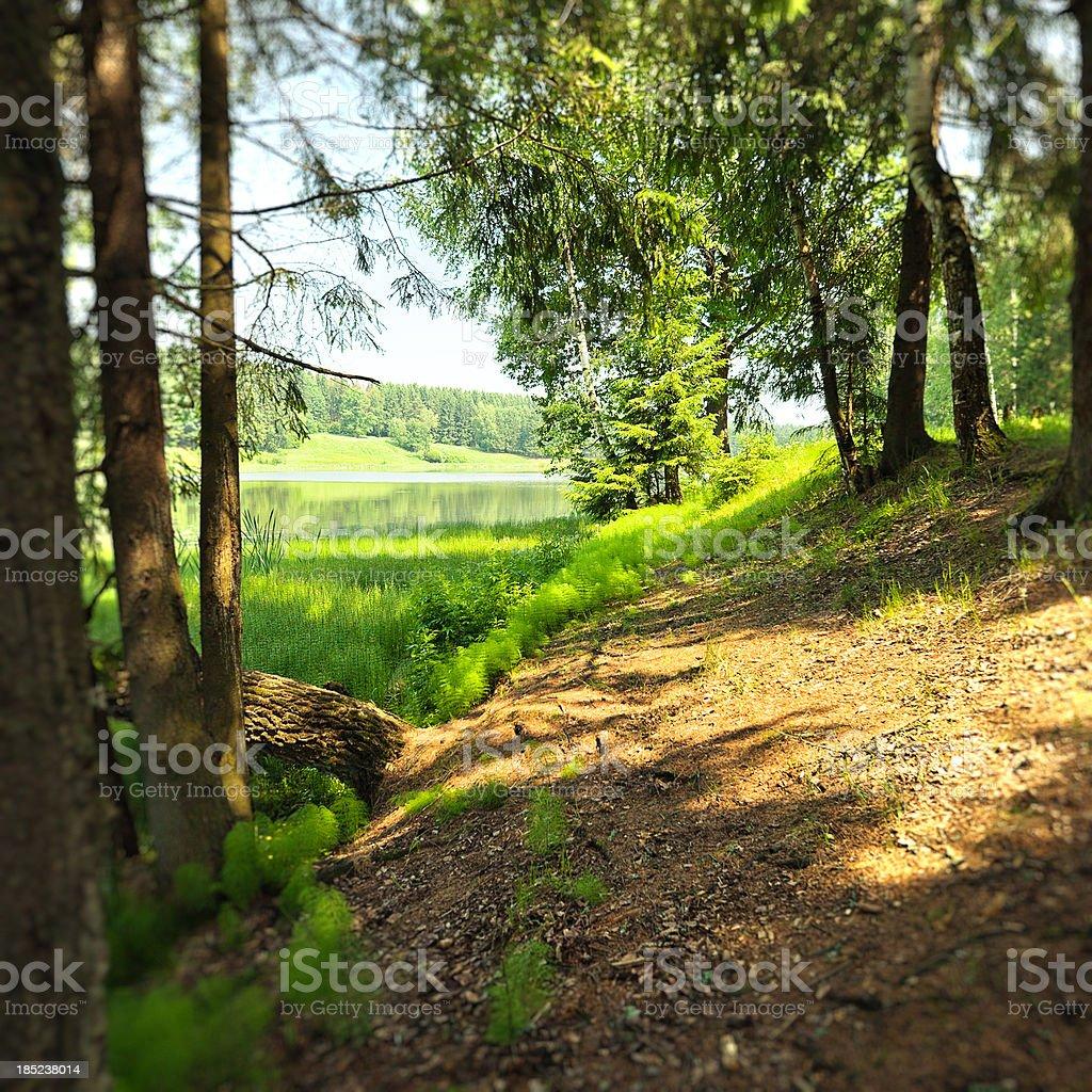 Spring Green Landscape stock photo