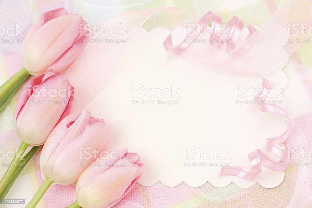 Spring Greeting Card royalty-free stock photo