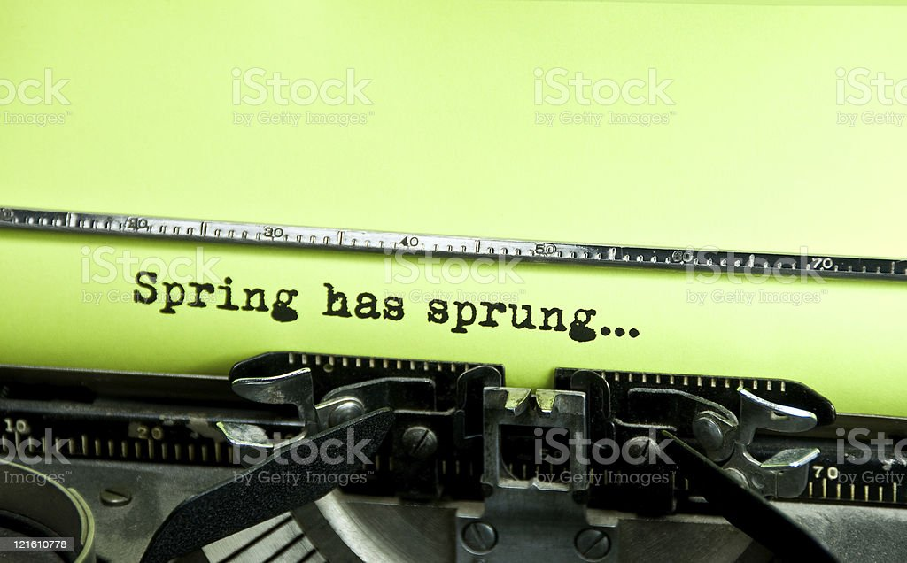 Spring has sprung... royalty-free stock photo