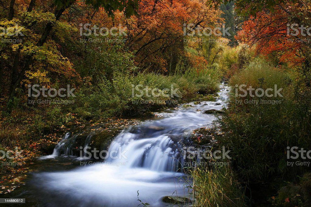 Spring Hollow Campground Stream stock photo