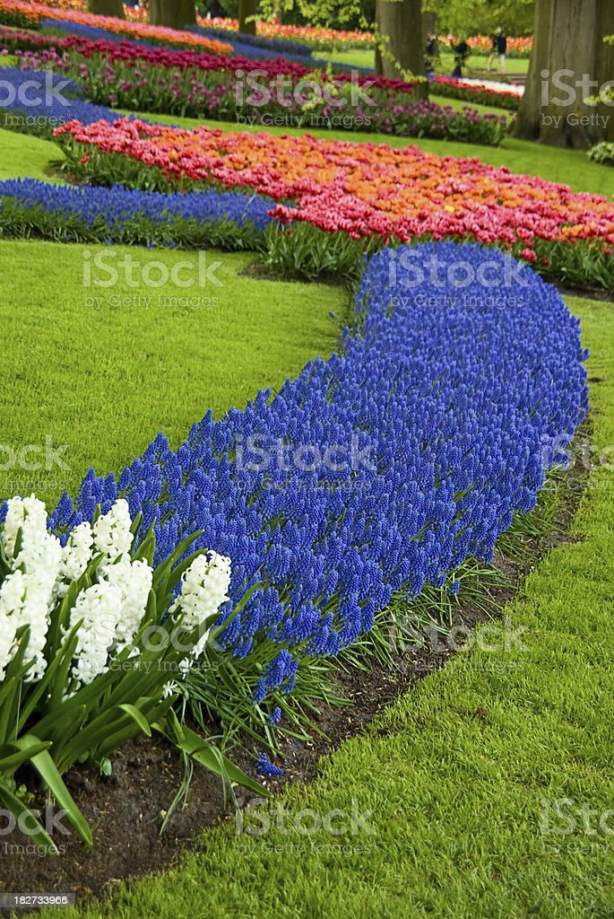 Spring in beautiful colorful park royalty-free stock photo