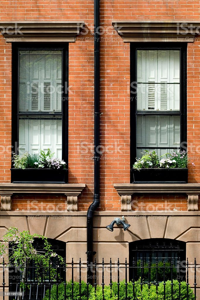Spring in Brooklyn royalty-free stock photo