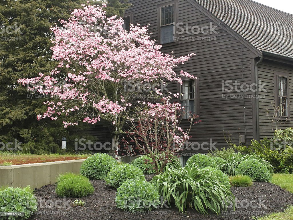 Spring in Cape Cod royalty-free stock photo