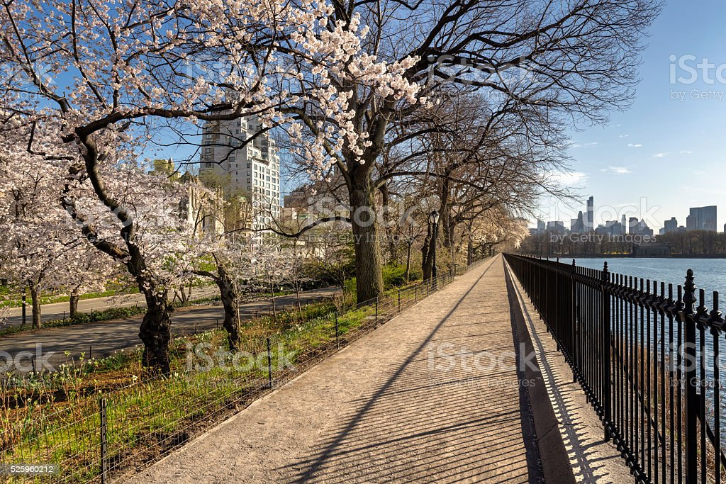 Spring in Central Park and Upper East Side. New York stock photo