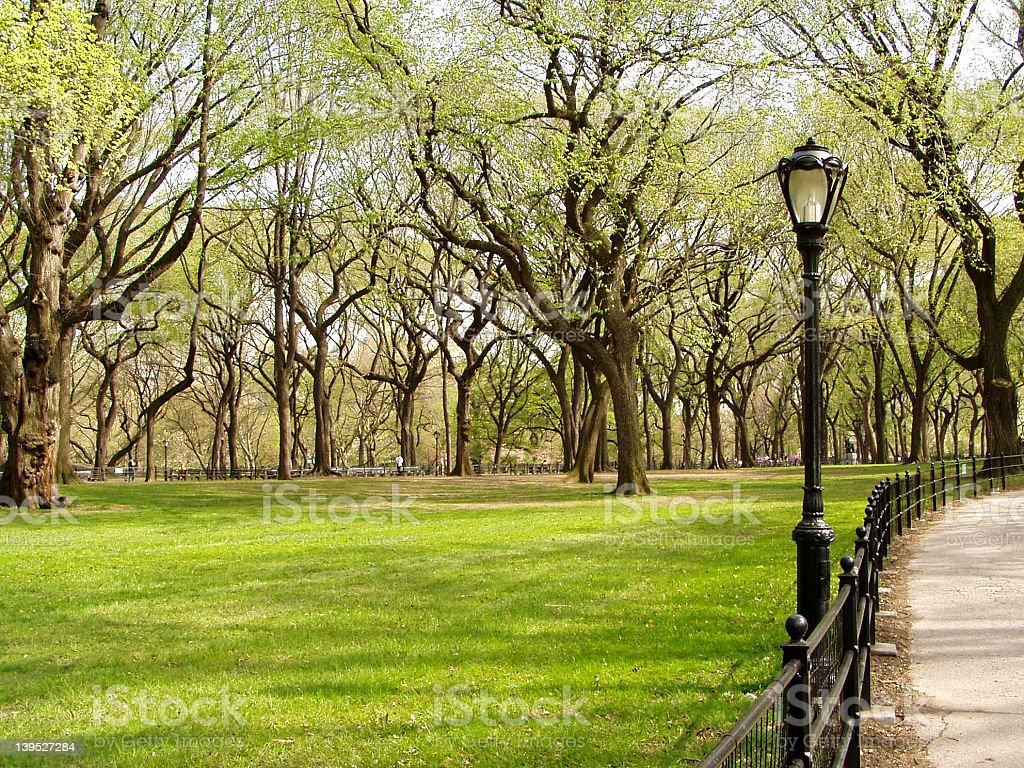 Spring in Central Park stock photo