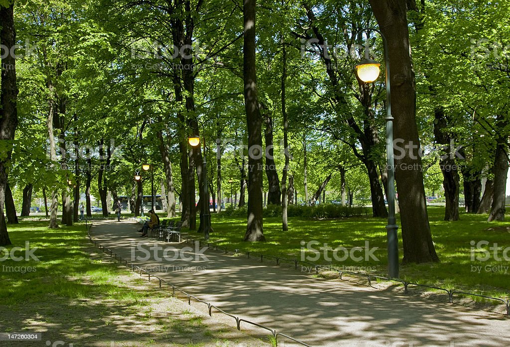 Spring in city park royalty-free stock photo
