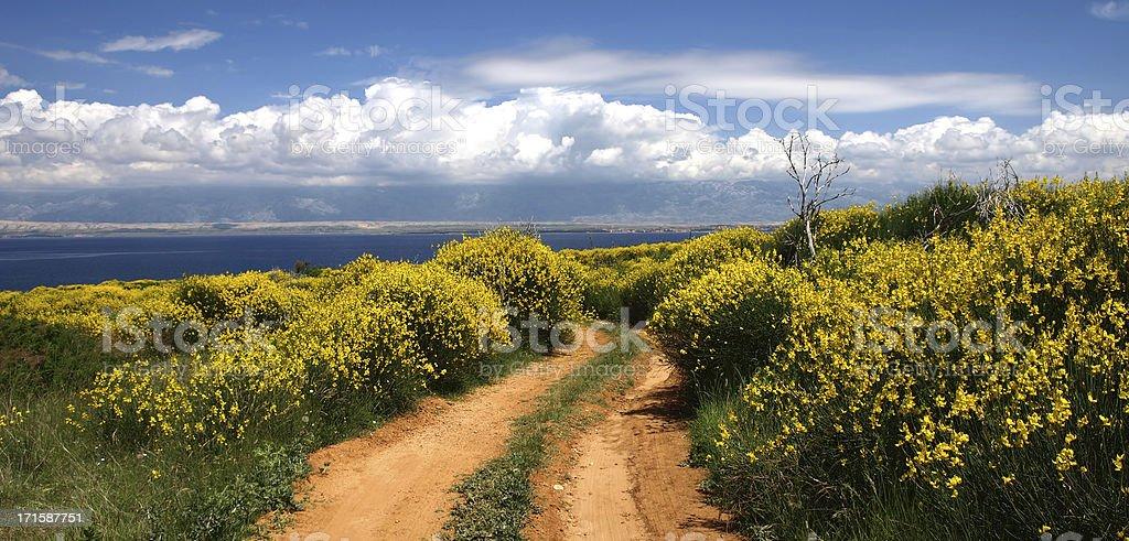 Spring in Dalmatia royalty-free stock photo