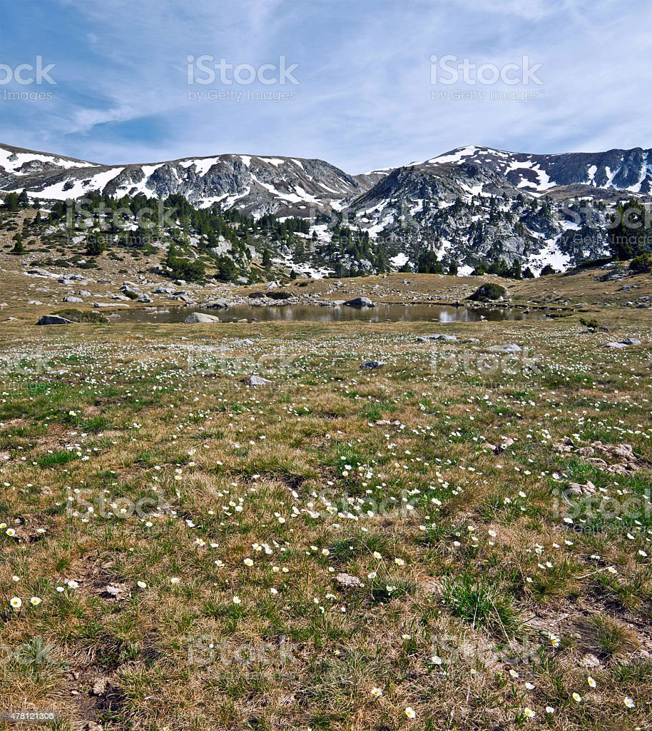 Spring in mountain valley stock photo