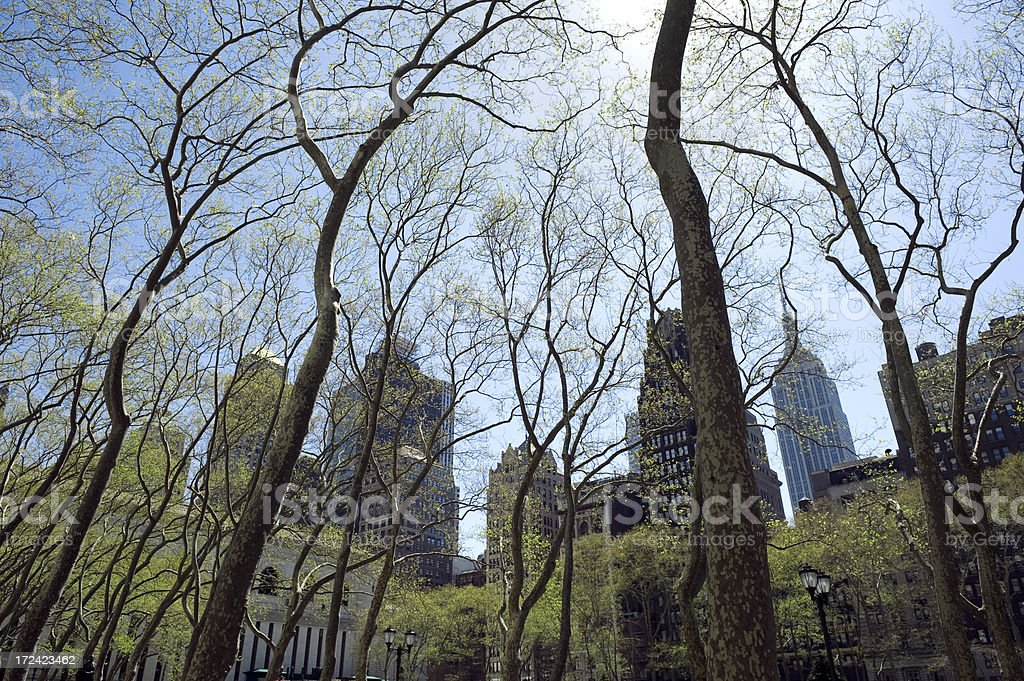 Spring In New York stock photo