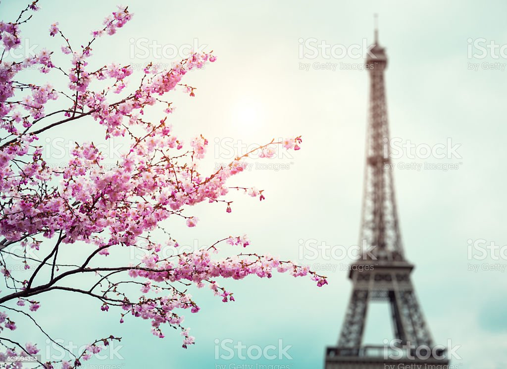 Spring In Paris stock photo