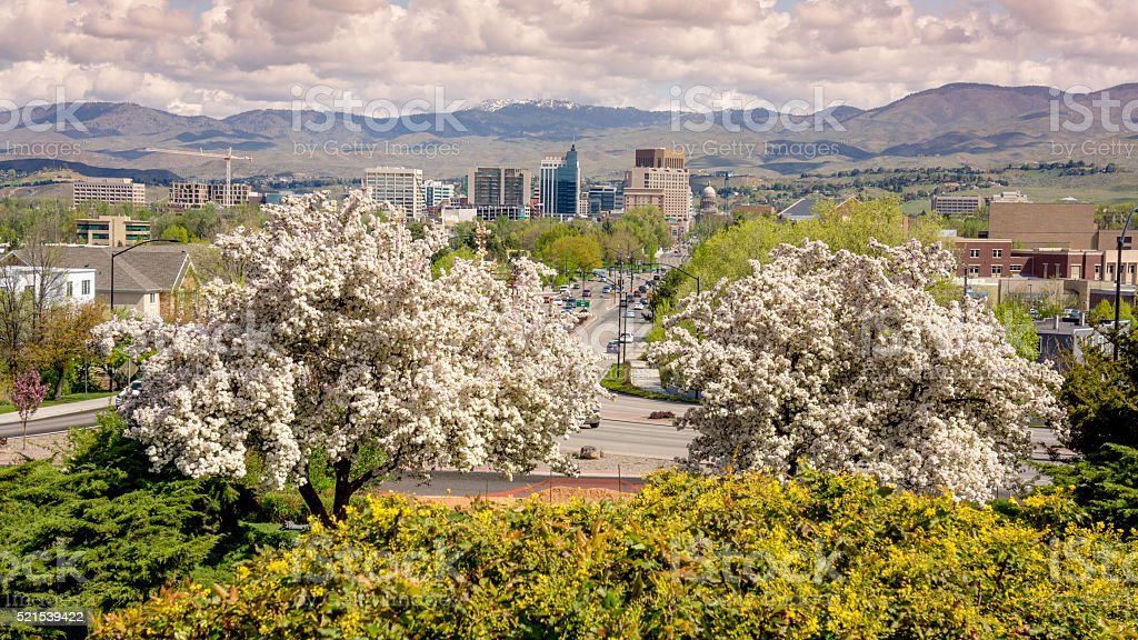 Spring in the city of Boise Idaho with flowering trees stock photo