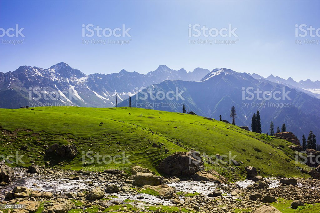 Spring in the valley royalty-free stock photo