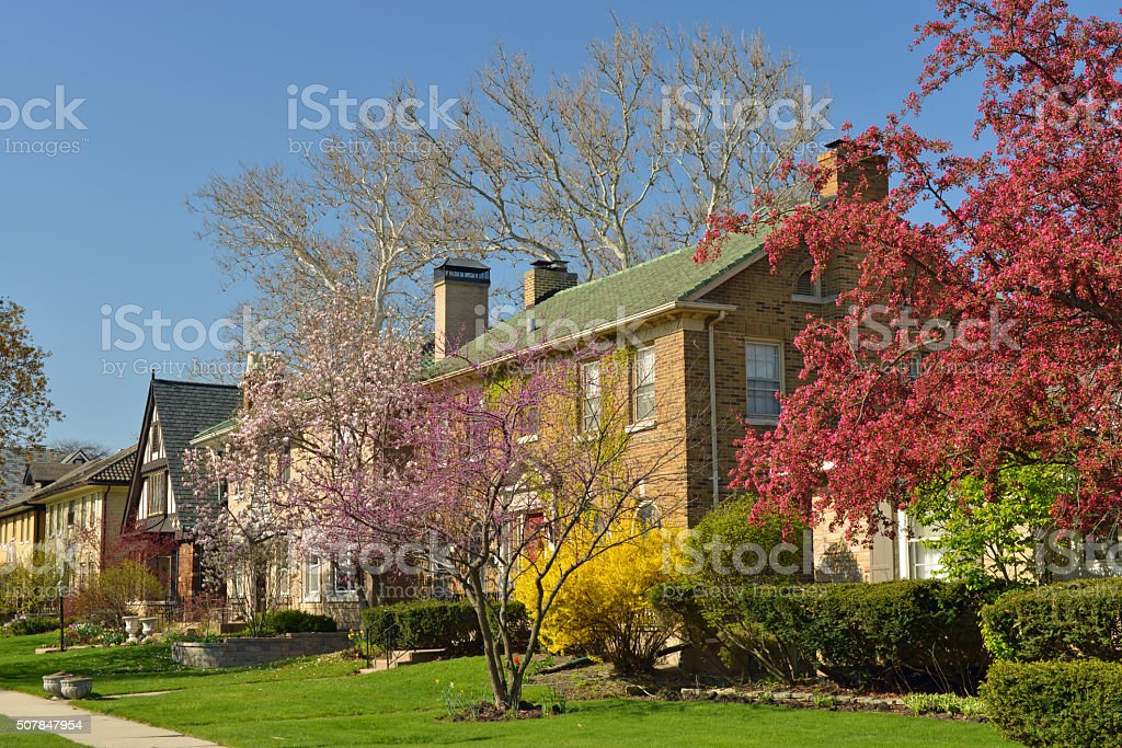 Spring in town stock photo