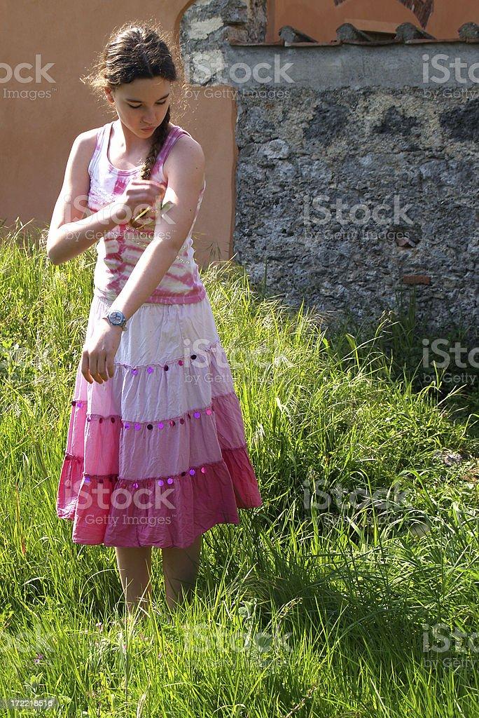 Spring in Tuscany stock photo