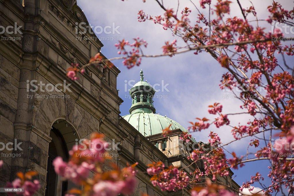 Spring in Victoria stock photo