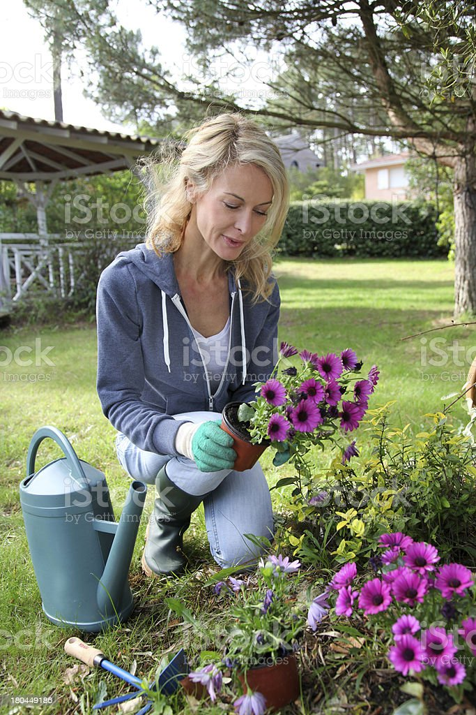 Spring is best season to plant flowers royalty-free stock photo