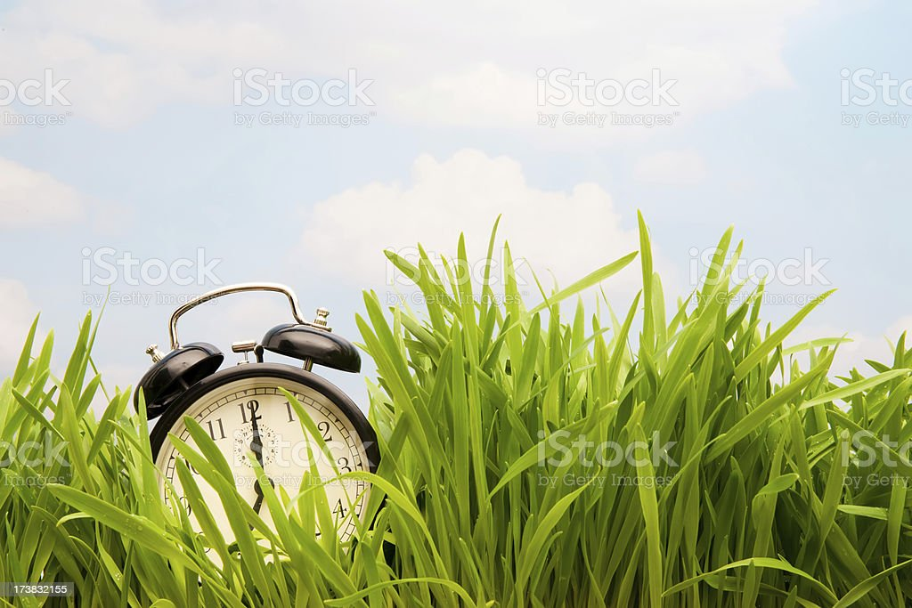spring is coming royalty-free stock photo