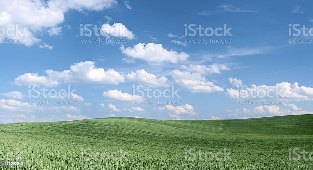 Spring landscape 39 MPix - XXXXL size royalty-free stock photo