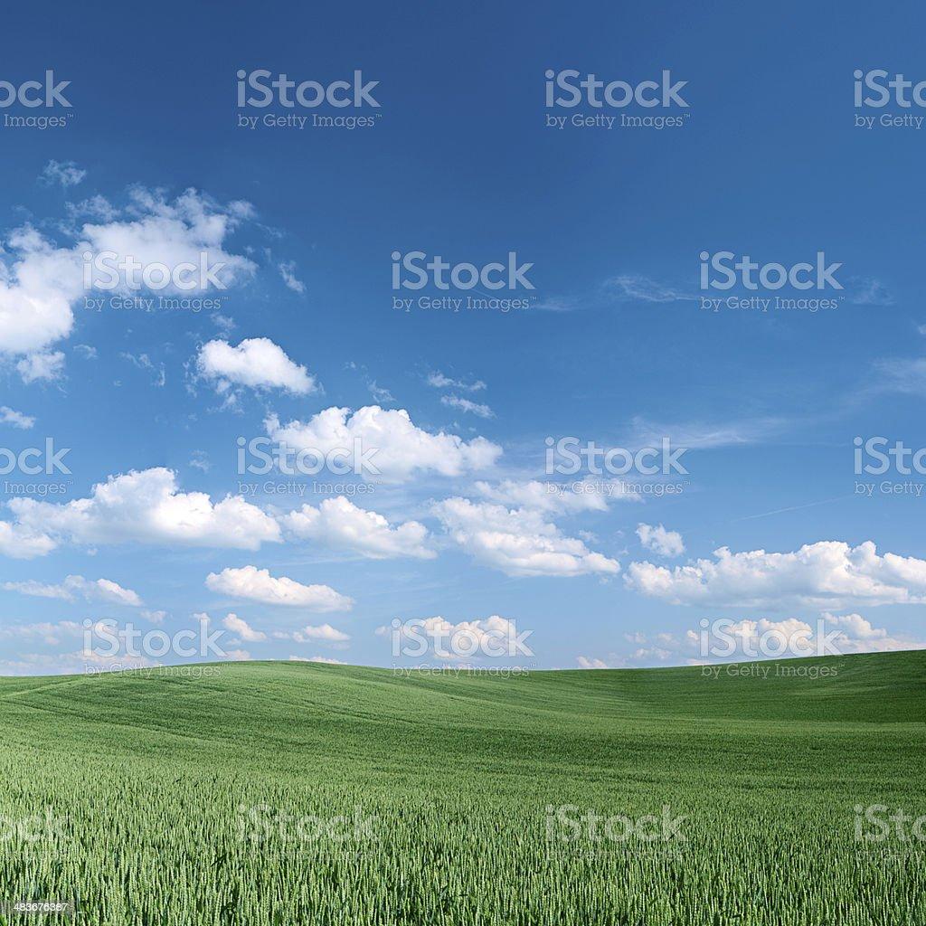 Spring landscape 54 MPix - XXXXL size royalty-free stock photo