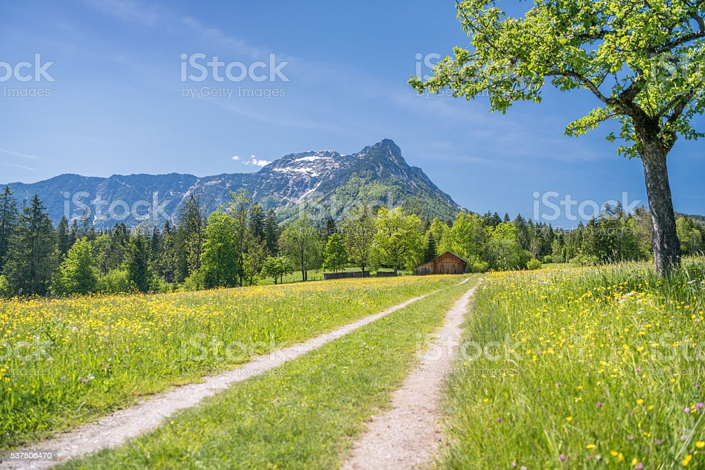 Spring Landscape, Austrian Alps with Sarstein Mountain, Steiermark, Bad Aussee stock photo