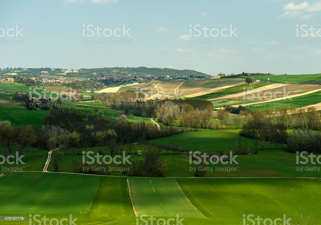 Spring landscape, cultivated green hills, flowering trees, Monferrato, Italy stock photo