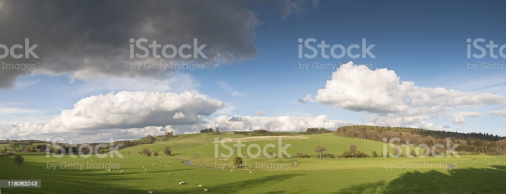 Spring landscape. royalty-free stock photo