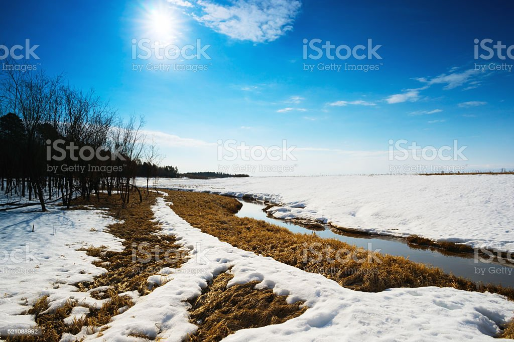 Spring landscape . stock photo