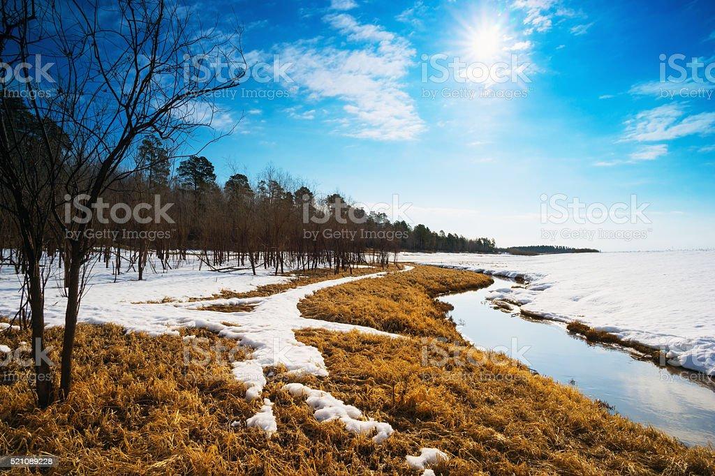 Spring landscape . Siberia, Yugra stock photo