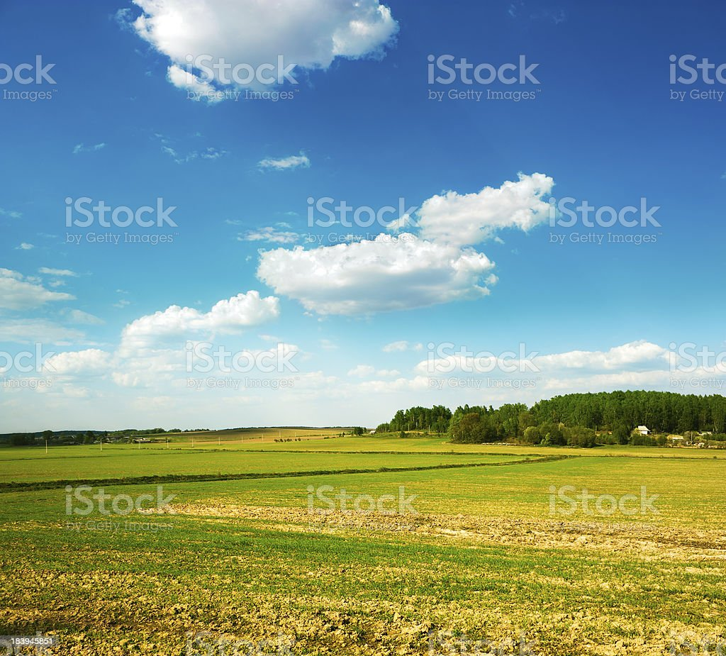 Spring Landscape with Field and Clouds royalty-free stock photo