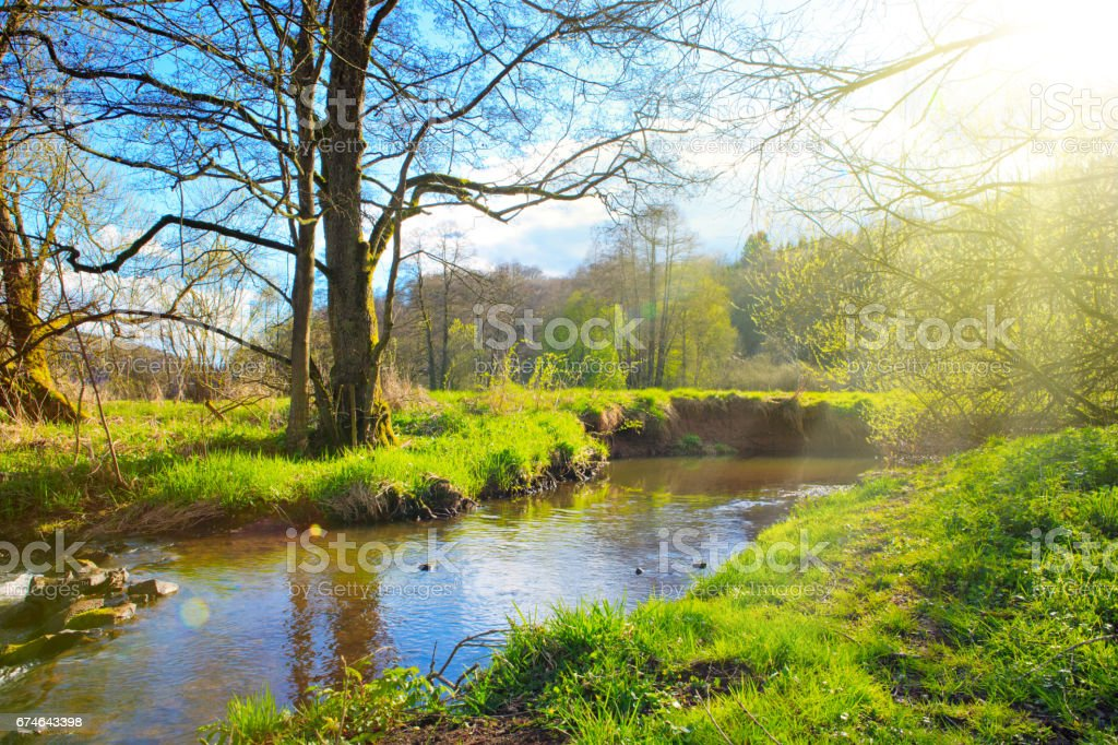 Spring landscape with river and sunshine stock photo