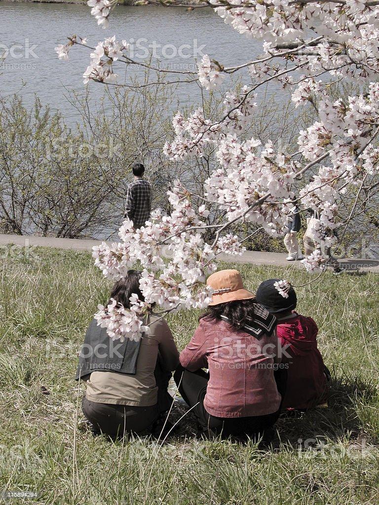 Spring leisure stock photo