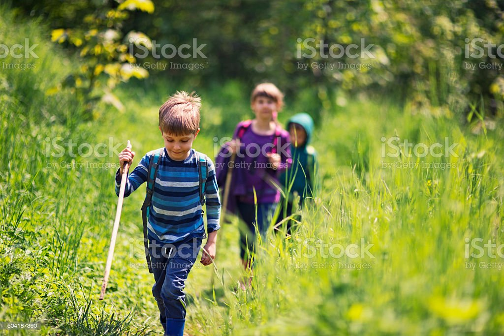Spring little hikers walking among fresh green  nature stock photo
