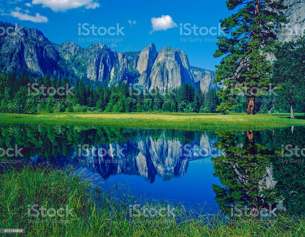 Spring meadow in Yosemite National Park, CA stock photo