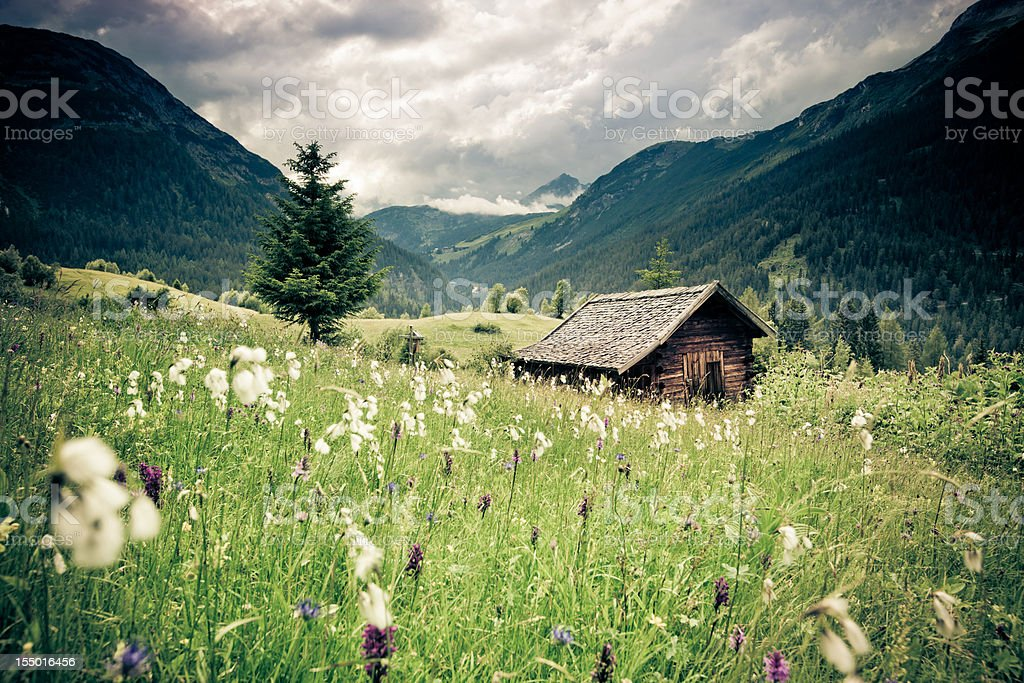spring meadow with dramatic sky n- tirol, austria- vintage filtered stock photo