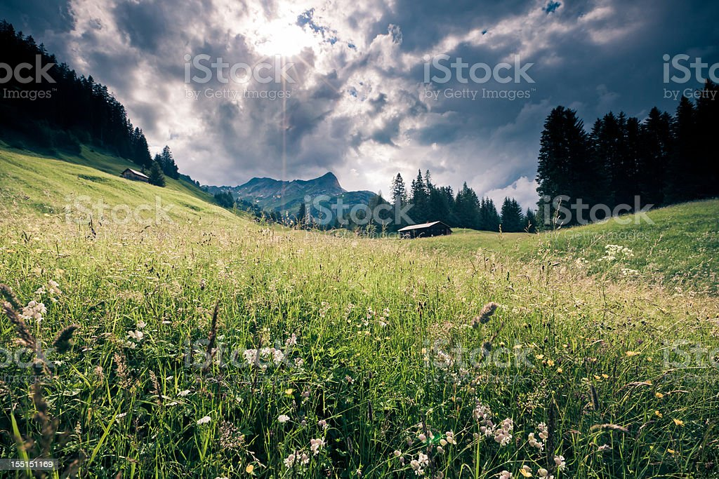 spring meadow with dramatic sky, tirol, austria- vintage filtered stock photo