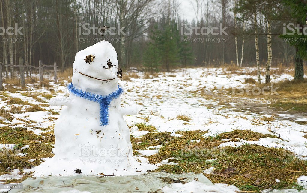 spring melt snowman stock photo