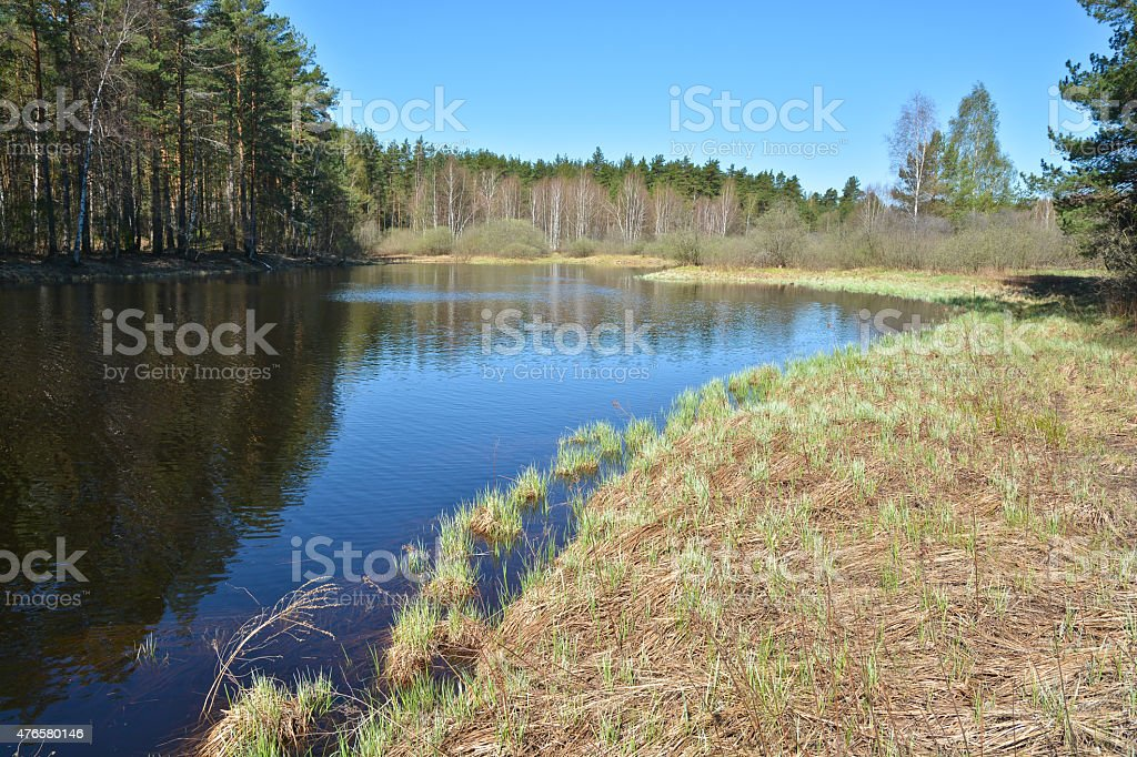 Spring. Morning on the river. stock photo