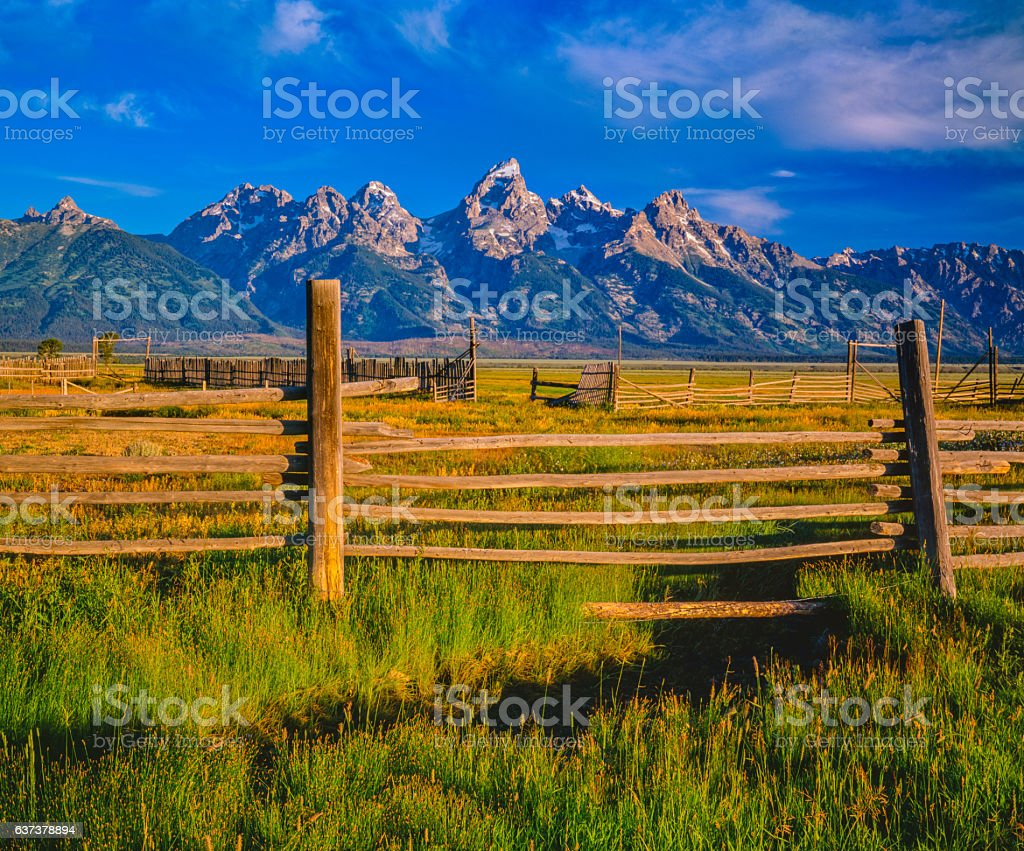 Spring morning with pole fencing in the Grand Tetons NP(P) stock photo