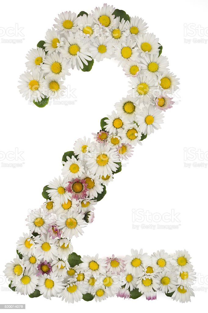 spring number 2, font, natural flowers daisies stock photo