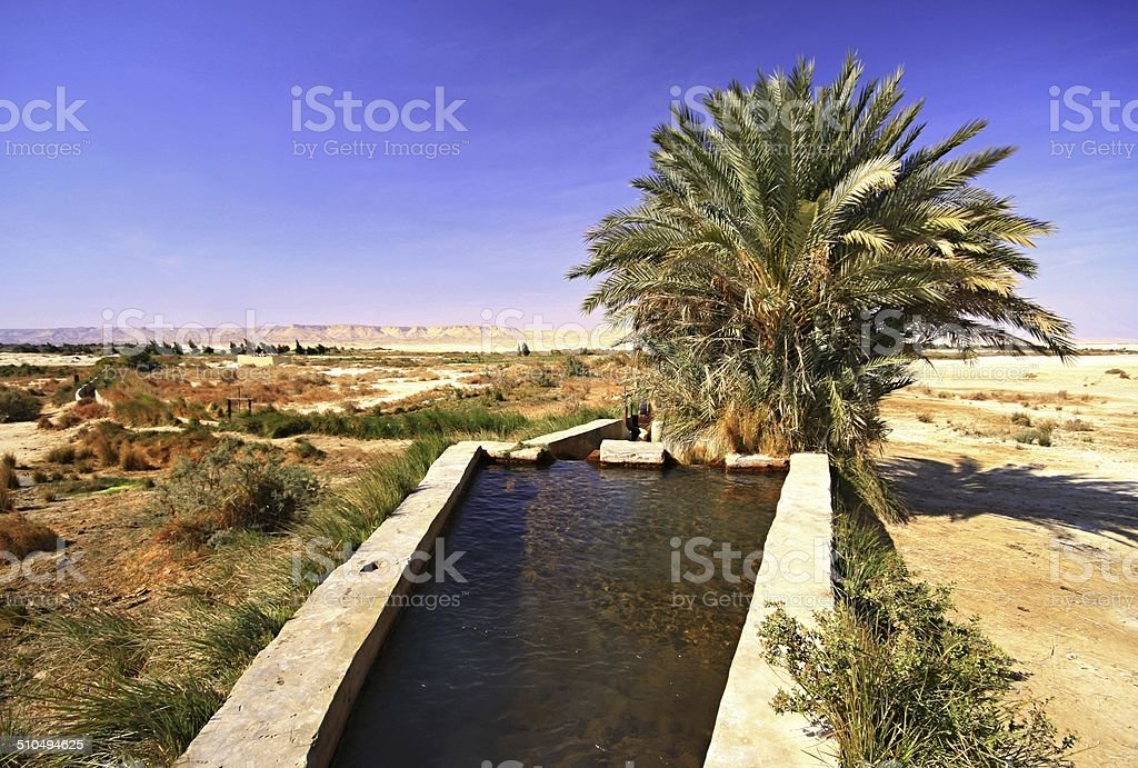Spring of water near Dakhla oasis stock photo