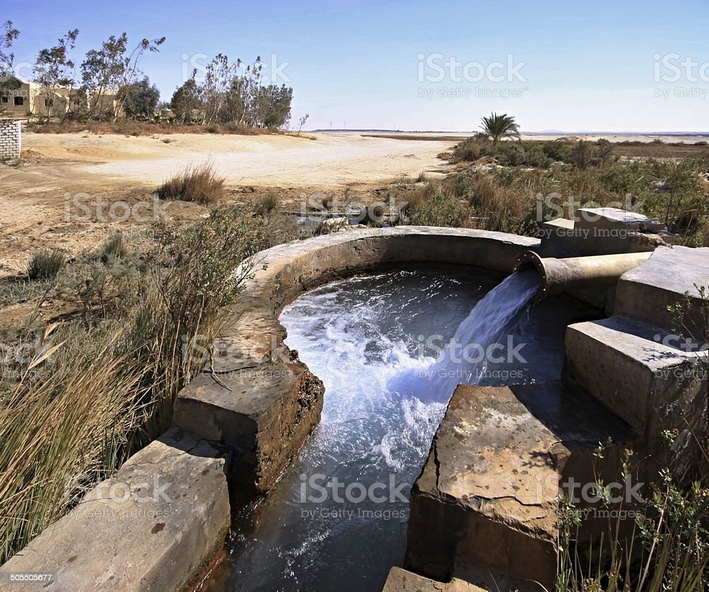 Spring of water near Kharga oasis stock photo