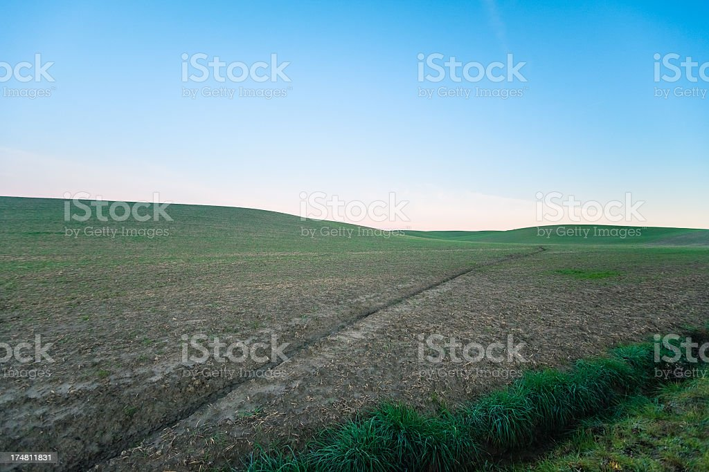 Spring on cultivated fields royalty-free stock photo