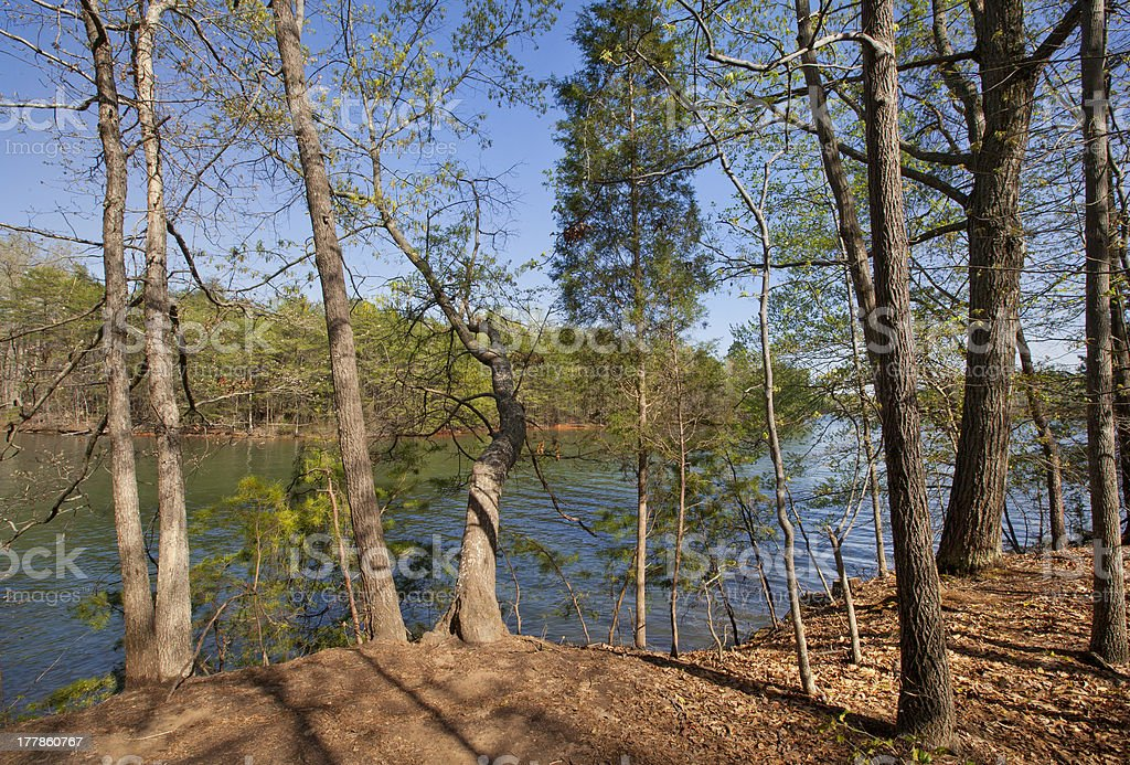 Spring on Lake Norman stock photo